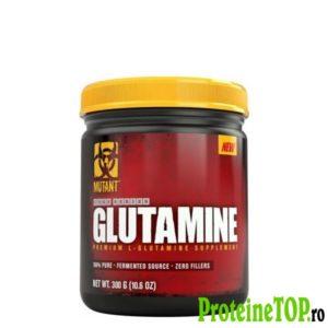 Glutamina-Mutant