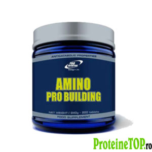 Amino Pro Building Tablete