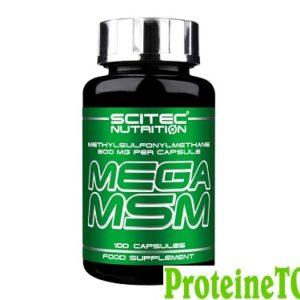 Mega-MSM